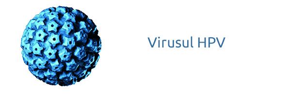 hpv-virus